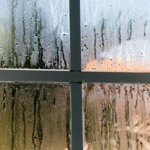 wilgoć, damp, woda, okno